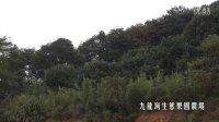九龙湾乡村庄园2013宣传片(余姚慈溪)