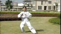 陈式太极拳老架一路62-74式 教学版 王二平