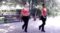 贞峰广场舞--花蝴蝶