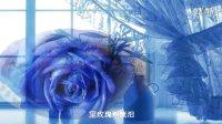 原创歌曲:蓝玫瑰(雁之南)
