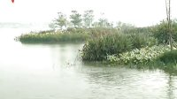 广州最大人工湖——白云湖今天开放 111128 广东新闻联播