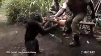 给黑猩猩玩AK的下场