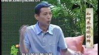 陈金柱最新视频——如何养好你的脾——湖北电视台《新本草纲目》
