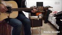 Kevin录制 天音兰花 T-901 专业音孔拾音器测评