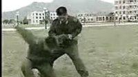 军警要害部位打击技术(下)