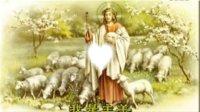 天主教歌曲--【我是主的羊】 舞蹈视频--  哈尔滨-木兰东兴教会单身董涛QQ924726367