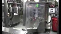 包装机:糖包装机,盐包装机,青豆包装机