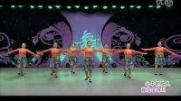 华语群星-心中的歌儿献给金珠玛 (128步 广场健身舞)