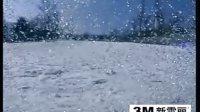 CCTV央视双板滑雪教学教程(零基础开始) 10
