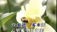 民族金曲:珊瑚颂,原唱:朱逢博