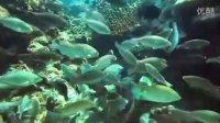 【马来西亚旅游局】停泊岛 Perhentian,你值得停泊参观的热带天堂!