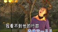 卓依婷歌曲大全(24首歌)【八】
