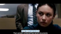 2012《叛谍追击》  BD高清国语配音中文字幕无水印