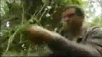 【运动天下】贝爷在亚马逊雨林 国语高清荒野求生第二季5 [户外]_标清