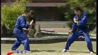 南派纵鹤拳 技击欣赏