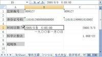 电子表格视频教学excell07_单元格类型