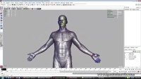 Human anatomy study and demo of Tracker System
