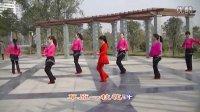 南阳和平广场舞系列—草原一枝花(团队版)