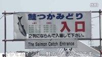 【玩转青森】--奥入濑溪流鲑鱼祭--特色推荐