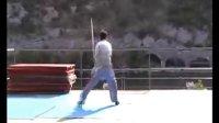 傅能斌老师最新视频--太极剑表演