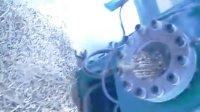 济南精创直径8mm生物质颗粒机生产视频