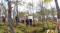 全国两会特别报道 新跨越 推广长汀经验建设生态省 120307 东南卫视