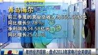 年终经济观察:盘点2013年家电行业关键词 131227 新财经