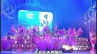 2007苏州重元寺佛教音乐会DVD