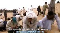 NHK巨资纪录片《人类四大文明全集》埃及文明  标清
