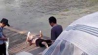 扬州古运河发现一女尸 初步断定是谋杀下毒投入河中淹死
