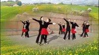 南陵广场双人舞 健身队 慢三 红粉雨