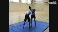 传统柔术格斗技巧