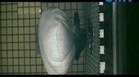 高速摄像机高速相机下的气囊