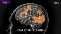 阅读障碍症的功能性障碍研究1-脑功能测试-竞思推荐(三)