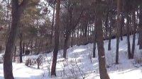 冬天的南山