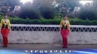 梦里的姑娘-惠汝广场舞