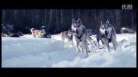 路虎全球探享之旅芬兰