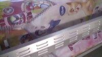 惠阳环球 UD-1812LB 涤纶布打印 Polyester Printing