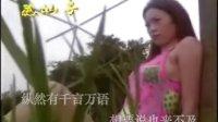 031龙飘飘经典歌曲  - 痴情的人MTV.flv