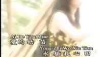 091龙飘飘经典歌曲  - 相见不如怀念.flv