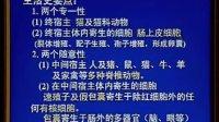 《病原生物学》第35讲-共36讲-中国医科大学