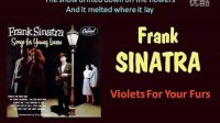 Frank Sinatra - Violets For Your Furs (有歌詞)