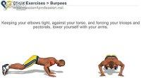 同时锻炼胸肌,股四头肌,肩部,三头肌。