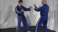 Jikishin柔术紫带技术