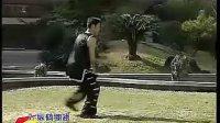 南派纵鹤拳3