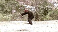 印尼传统武术Pencak Silat教学课程 1.