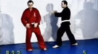 战斗柔术官方教学-西班牙