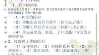 特用经济作物栽培技术 04 四川农业大学 (全套13讲见优酷空间专辑) 自学视频教程观看与下载
