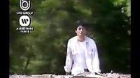 王杰 叶欢《你是我胸口永远的痛》