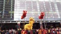看过的最好的舞龙舞狮,非常专业的演员团队,喜庆热闹,新年快乐